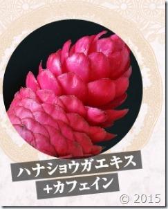 hanasyouga-ekisu